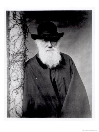 charles-darwin-1881-posters
